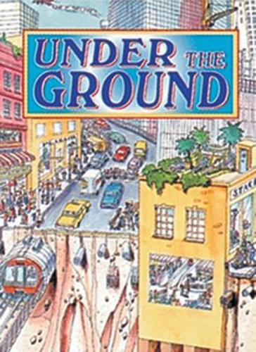 Under the Ground: Panther - Wildcats (Paperback)