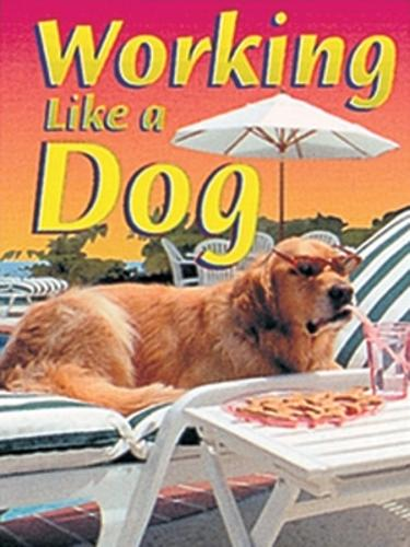 Working Like a Dog - Wildcats (Paperback)