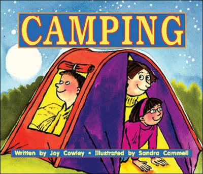 Camping - Storyteller (Paperback)