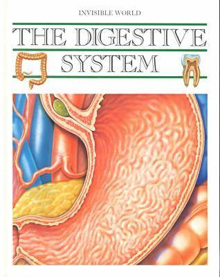 The Digestive System - Invisible World S. (Hardback)