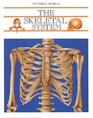 The Skeletal System - Invisible World (Hardback)