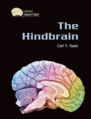 The Hindbrain - Gray Matter (Hardback)