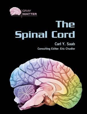 The Spinal Cord - Gray Matter (Hardback)