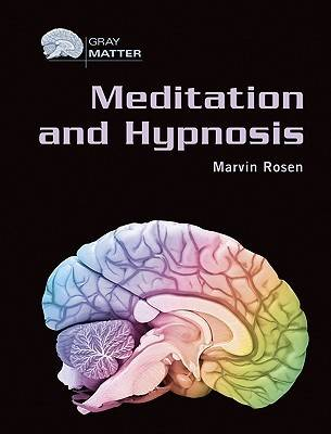 Meditation and Hypnosis - Gray Matter (Hardback)