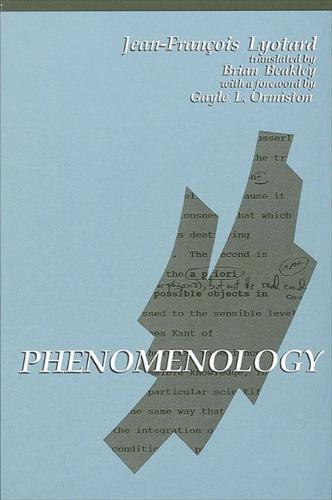 Phenomenology - SUNY series in Contemporary Continental Philosophy (Hardback)
