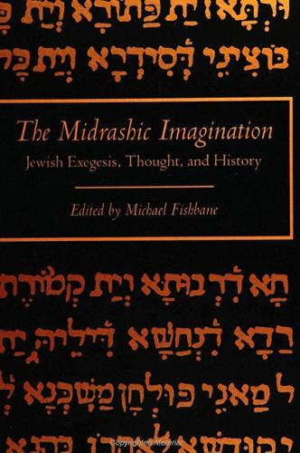 The Midrashic Imagination: Jewish Exegesis, Thought, and History (Paperback)