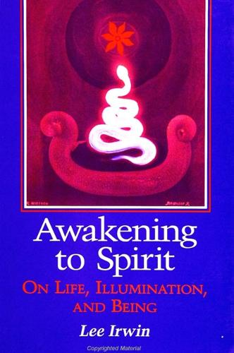 Awakening to Spirit: On Life, Illumination, and Being - SUNY series, Explorations in Contemporary Spirituality (Paperback)