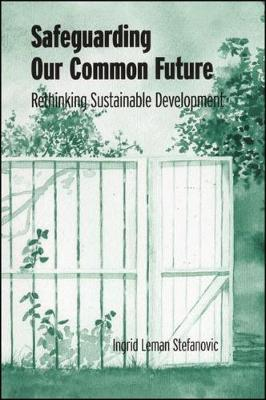 Safeguarding Our Common Future: Rethinking Sustainable Development - SUNY series in Environmental and Architectural Phenomenology (Hardback)