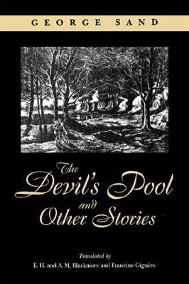 The Devil's Pool and Other Stories - SUNY series, Women Writers in Translation (Hardback)