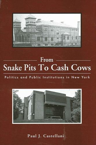 From Snake Pits to Cash Cows: Politics and Public Institutions in New York (Paperback)