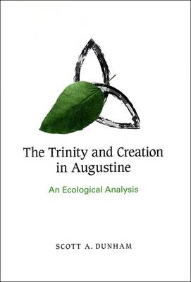 The Trinity and Creation in Augustine: An Ecological Analysis (Paperback)