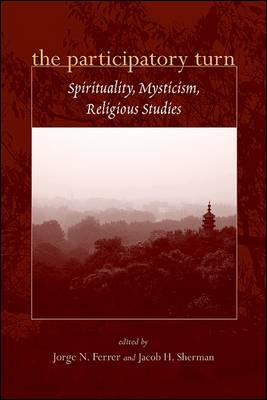 The Participatory Turn: Spirituality, Mysticism, Religious Studies (Paperback)