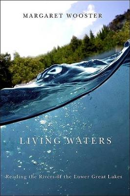 Living Waters: Reading the Rivers of the Lower Great Lakes (Hardback)
