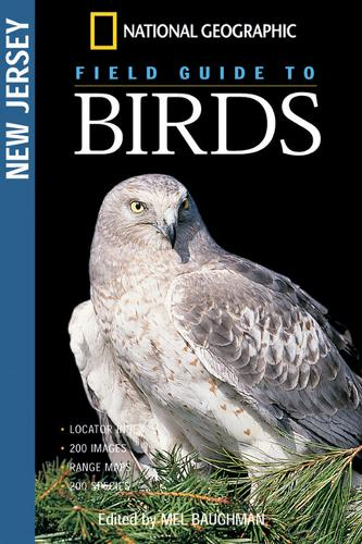 Ngeo Field Guide To The Birds (Paperback)