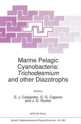Marine Pelagic Cyanobacteria: Trichodesmium and other Diazotrophs - NATO Science Series C 362 (Hardback)