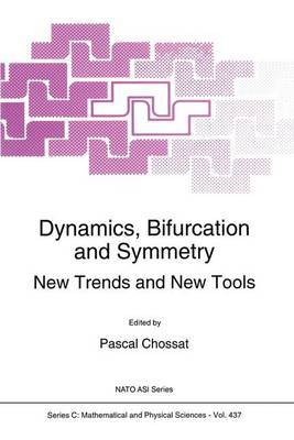Dynamics, Bifurcation and Symmetry: New Trends and New Tools - NATO Science Series C 437 (Hardback)