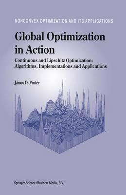 Global Optimization in Action: Continuous and Lipschitz Optimization: Algorithms, Implementations and Applications - Nonconvex Optimization and Its Applications 6 (Hardback)