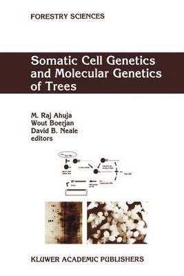 Somatic Cell Genetics and Molecular Genetics of Trees - Forestry Sciences 49 (Hardback)