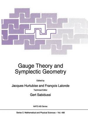 Gauge Theory and Symplectic Geometry - NATO Science Series C 488 (Hardback)