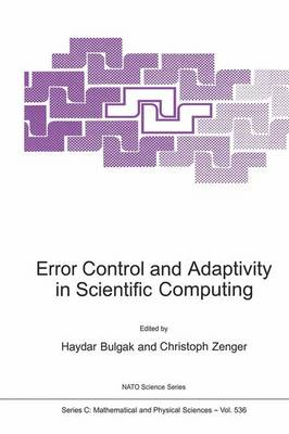 Error Control and Adaptivity in Scientific Computing - NATO Science Series C 536 (Paperback)