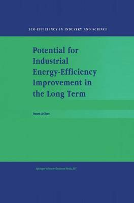 Potential for Industrial Energy-Efficiency Improvement in the Long Term - Eco-Efficiency in Industry and Science 5 (Hardback)