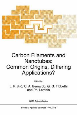 Carbon Filaments and Nanotubes: Common Origins, Differing Applications? - Nato Science Series E: 372 (Paperback)