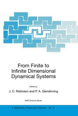 From Finite to Infinite Dimensional Dynamical Systems - NATO Science Series II 19 (Hardback)