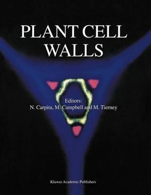 Plant Cell Walls (Hardback)