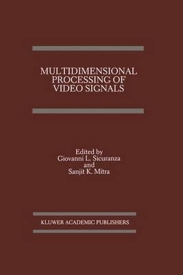 Multidimensional Processing of Video Signals - The Springer International Series in Engineering and Computer Science 171 (Hardback)