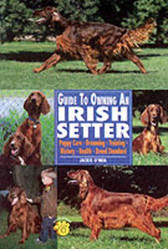 Guide to Owning an Irish Setter: Puppy Care, Grooming, Training, History, Health, Breed Standard (Paperback)