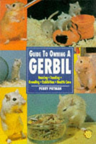 Guide to Owning a Gerbil (Paperback)