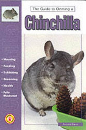 Guide to Owning a Chinchilla (Paperback)