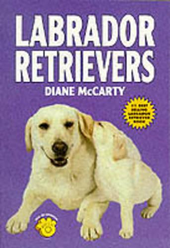 Labrador Retrievers (Paperback)