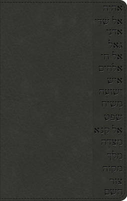 The Names of God Bible (Paperback)