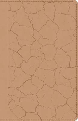 God Guy Bible (Leather / fine binding)