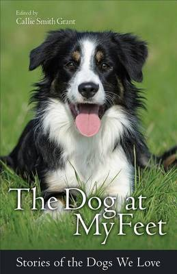 The Dog at My Feet: Stories of the Dogs We Love (Paperback)