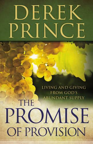 The Promise of Provision: Living and Giving from God's Abundant Supply (Paperback)
