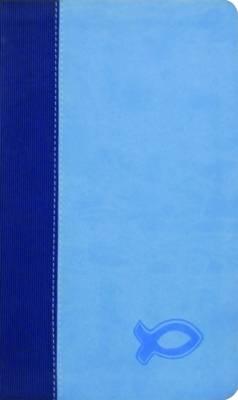 KJV Study Bible for Boys (Leather / fine binding)