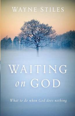 Waiting on God: What to Do When God Does Nothing (Paperback)