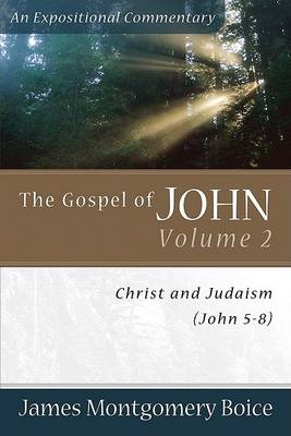 The Gospel of John: Christ and Judaism (John 5-8) v. 2 (Paperback)