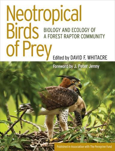 Neotropical Birds of Prey: Biology and Ecology of a Forest Raptor Community (Hardback)