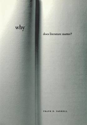 Why Does Literature Matter? (Hardback)