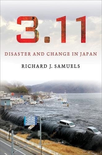 3.11: Disaster and Change in Japan (Hardback)