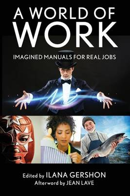 A World of Work: Imagined Manuals for Real Jobs (Paperback)