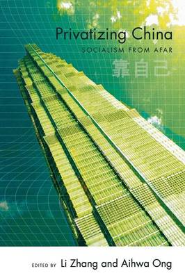 Privatizing China: Socialism from Afar (Paperback)