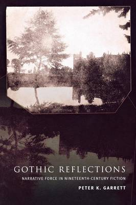 Gothic Reflections: Narrative Force in Nineteenth-Century Fiction (Paperback)