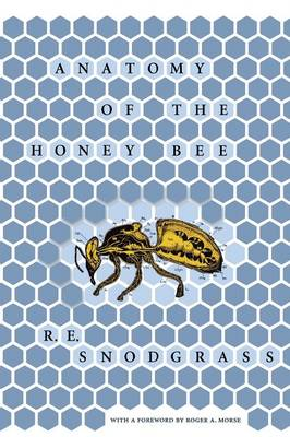 Anatomy of the Honey Bee (Paperback)