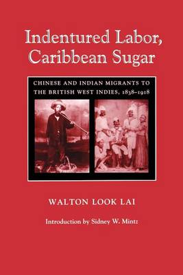 Indentured Labor, Caribbean Sugar: Chinese and Indian Migrants to the British West Indies, 1838-1918 - Johns Hopkins Studies in Atlantic History and Culture (Paperback)
