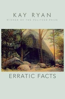 Erratic Facts (Paperback)