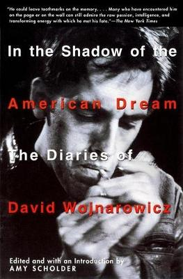 In the Shadow of the American Dream: The Diaries of David Wojnarowicz (Paperback)